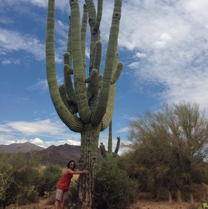 hugging the cactus